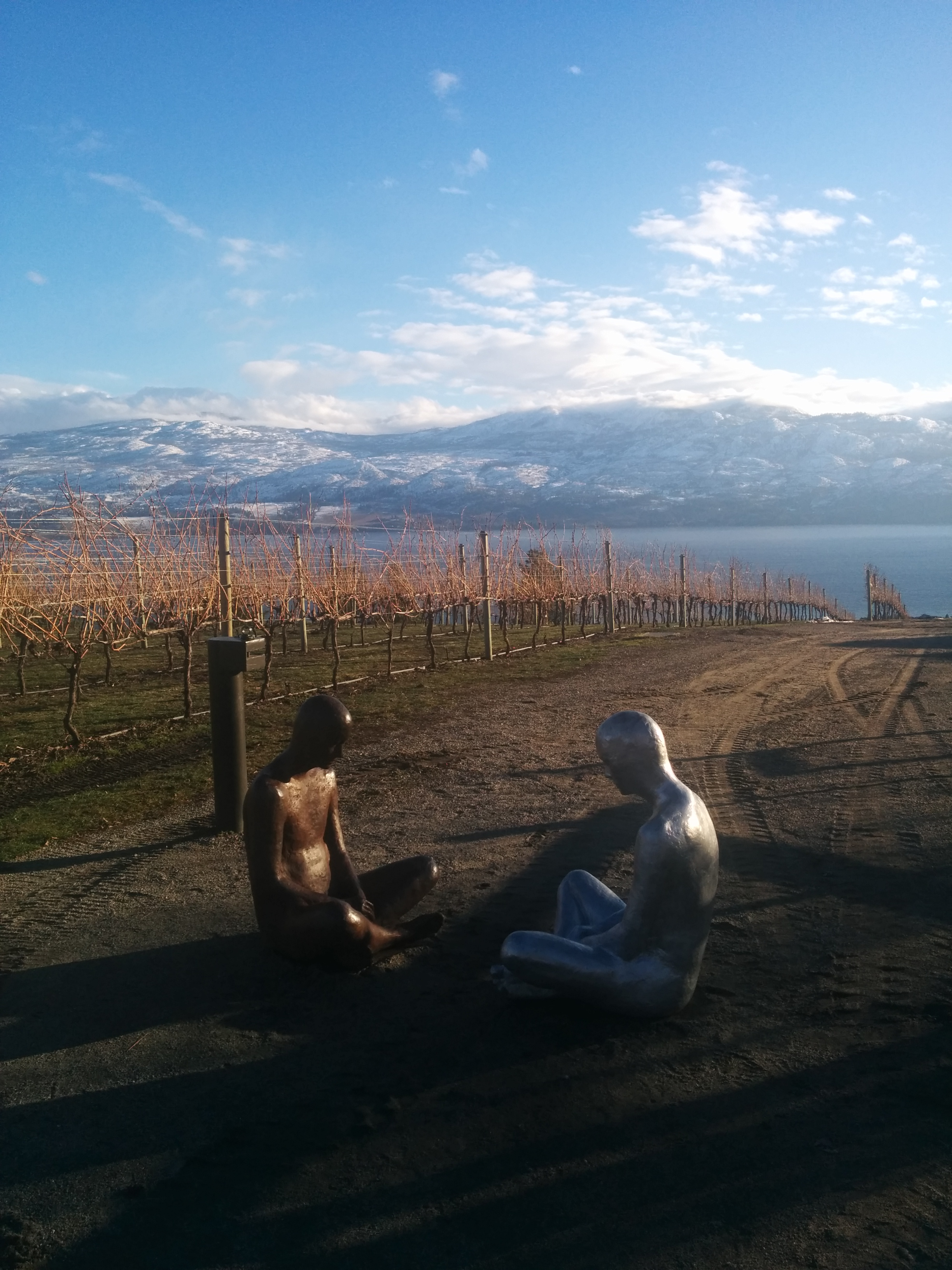 Okanagan Vineyards